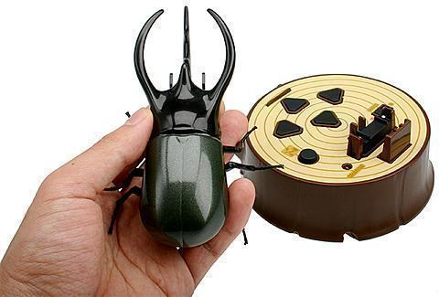 beetlebattle_caucasus.jpg