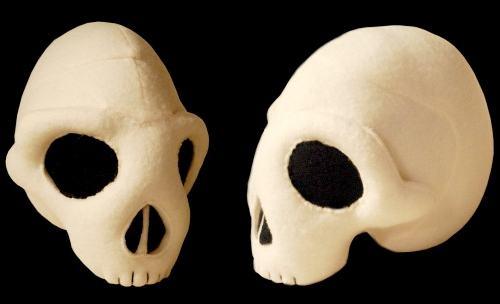 skull-lana-crooks