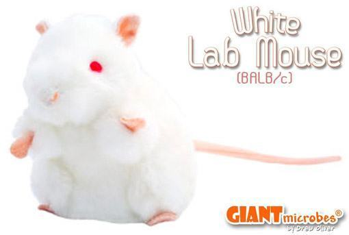 White-Lab-Mouse-Plush-Rato-Branco-Pelucia