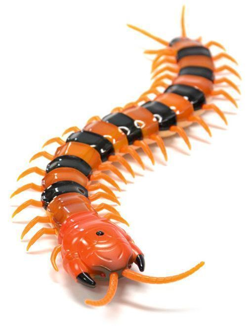 Creepy-Crawly-Remote-Control-Centipede-02