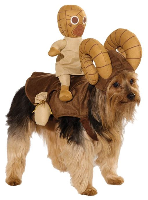 Star-Wars-Dog-Costumes-Fantasias-Cachorro-02