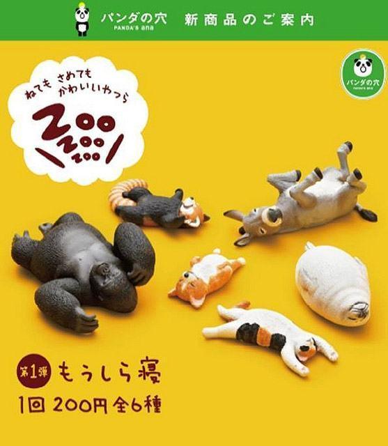 _ZooZooZoo-Animais-Dormindo-03