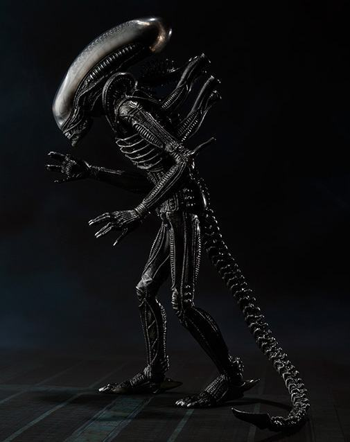 SH-MonsterArts-Alien-Big-Chap-06