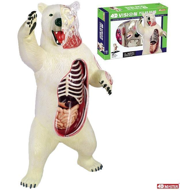 Quebra-Cabeca-4D-Vision-Polar-Bear-Model-01