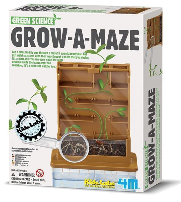 Green-Science-Grow-A-Maze-02