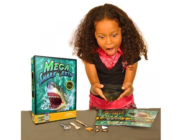 Mega-Shark-Teeth-Science-Kit-02