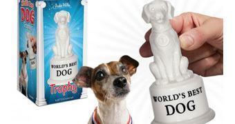 Troféu de Melhor Cão do Mundo!
