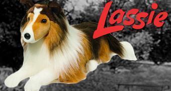 Lassie Pelúcia – 75 Anos da Cadela Mais Famosa do Mundo!