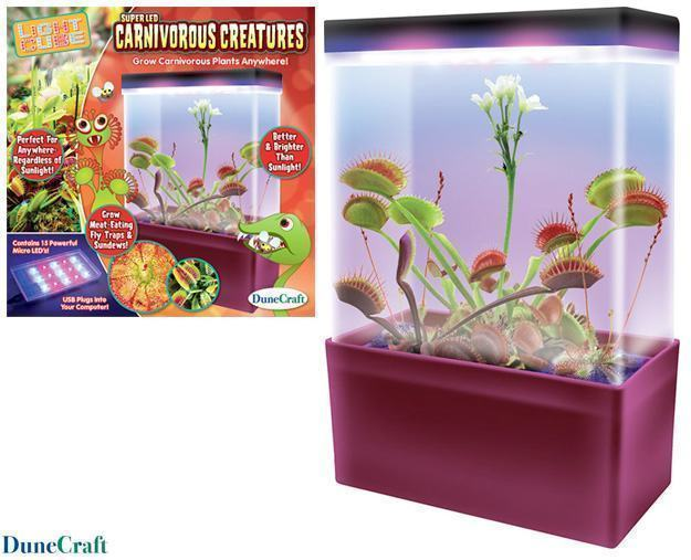 Carnivorous-Creatures-Light-Box-Kit-Plantas-Carnivoras-01