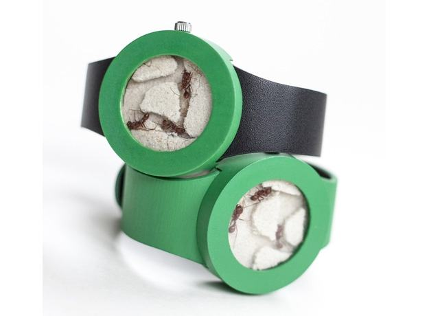 Relogio-Ant-Watch-01
