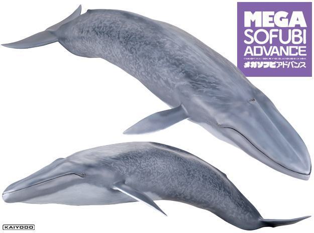 Baleia-Azul-Blue-Whale-Mega-Sofubi-Advance-01