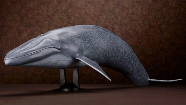 Baleia-Azul-Blue-Whale-Mega-Sofubi-Advance-08