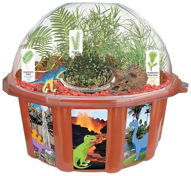 Dinosaur-Dome-Kit-Cientifico-Botanico-02
