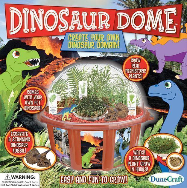 Dinosaur-Dome-Kit-Cientifico-Botanico-03