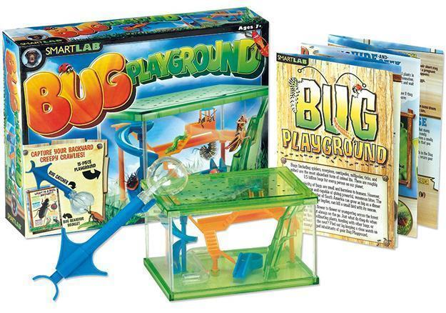 Bug-Playground-de-Insetos-02
