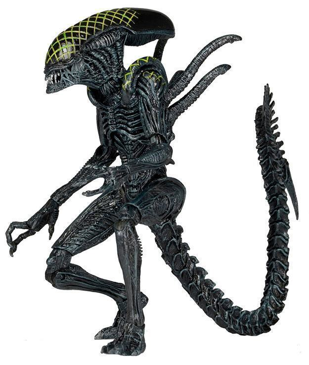 Aliens-Series-7-Action-Figure-Set-Neca-06