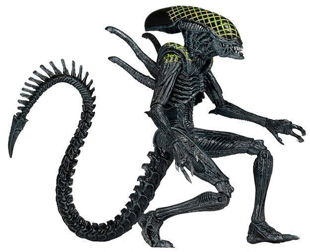 Aliens-Series-7-Action-Figure-Set-Neca-07