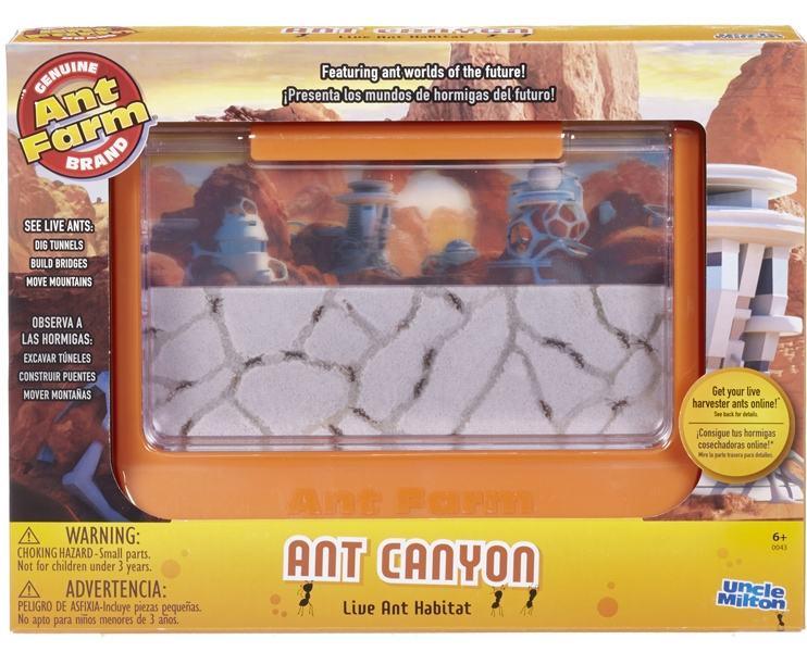 Fazendas-de-Formigas-60th-Ant-iversary-Ant-Farm-05