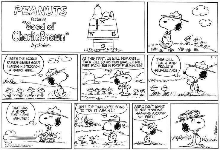Peanuts-Snoopy-and-Woodstock-Beagle-Scout