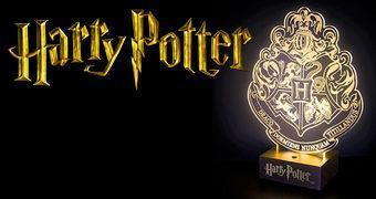 Luminária Harry Potter da Escola de Magia e Bruxaria de Hogwarts