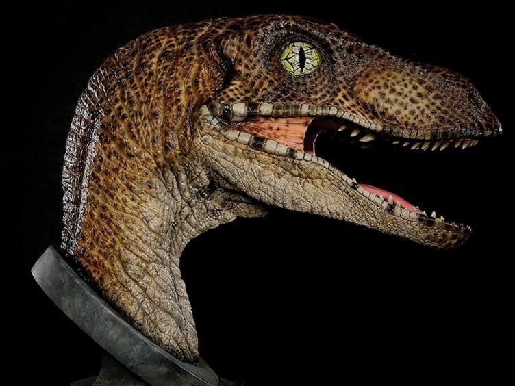 busto-jurassic-park-1-1-scale-velociraptor-bust-04