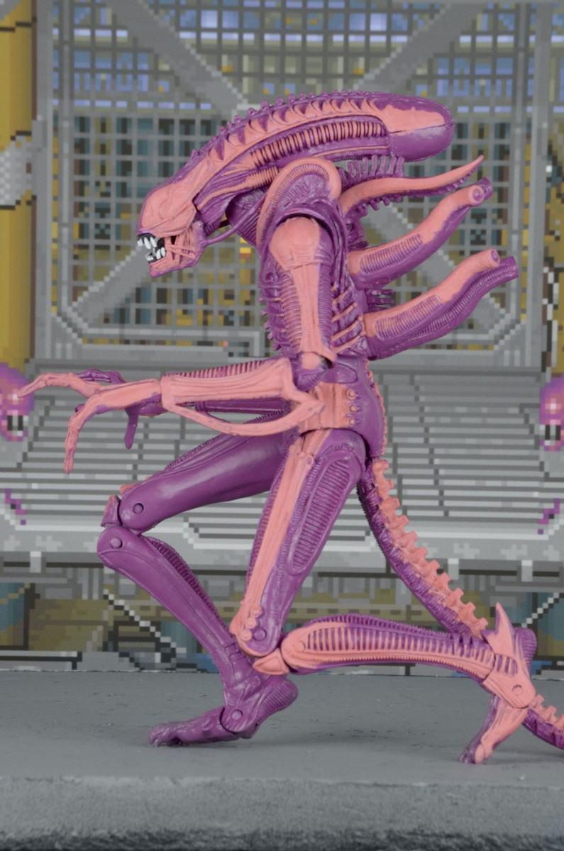 xenomorph-warrior-aliens-arcade-appearance-action-figure-02
