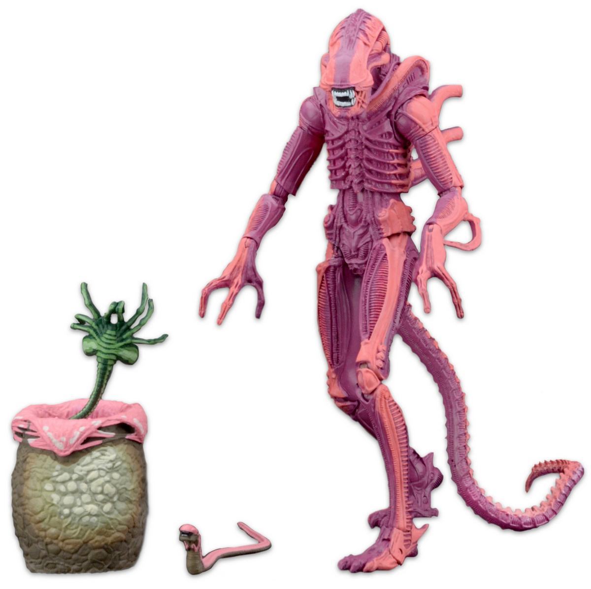 xenomorph-warrior-aliens-arcade-appearance-action-figure-05