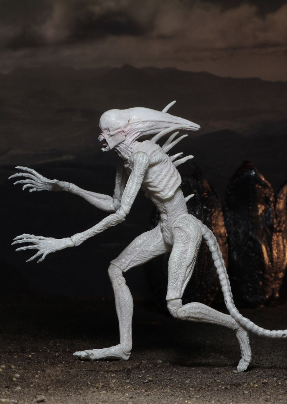 Alien-Covenant-7-Scale-Action-Figure-Neomorph-06