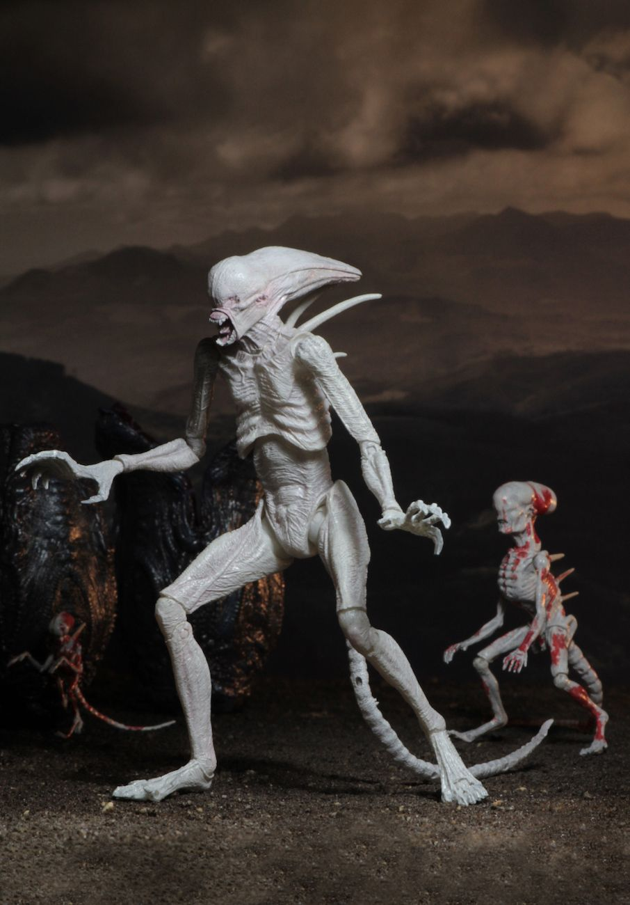 Alien-Covenant-7-Scale-Action-Figure-Neomorph-07
