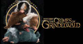 Quebra-Cabeça Bebês Nifflers Animais Fantásticos