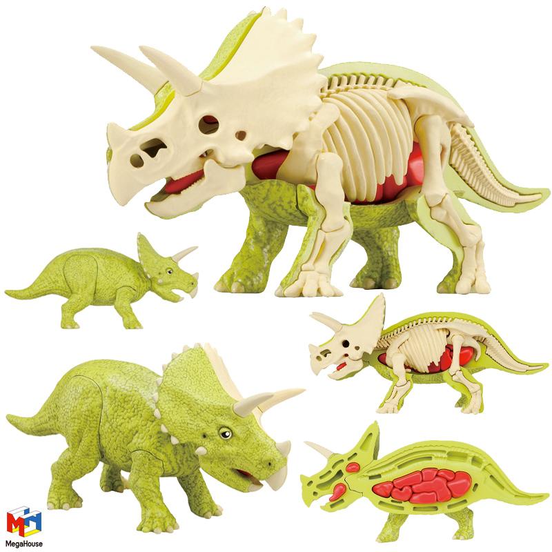 Quebra Cabeca 3D Anatomico Triceratops Kaitai Puzzle