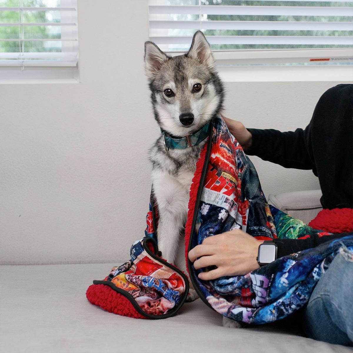 Cobertor de Lance Godzilla com 30 Pôsteres da Toho Pictures