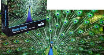 Quebra-Cabeça Impossível: Pavão com Cauda Aberta 1.000 Peças